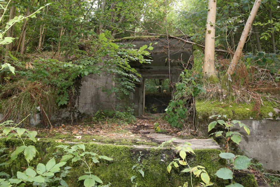 Vergessener Ort im Vogelsberg – die Luftmunitionsanstalt Hartmannshain